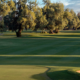 Tips For Golf Course Strategies